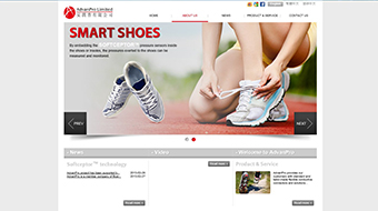 AdvanPro Limited - Web Design with CMS system development