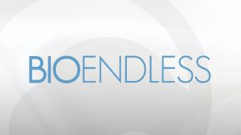 BIOENDLESS - Brand Development